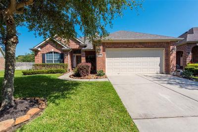 Porter Single Family Home For Sale: 20805 Hixon Creek Drive