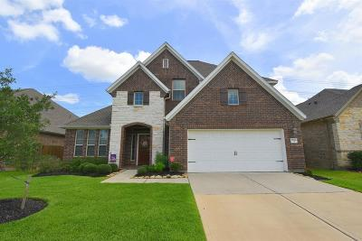 Tomball Single Family Home For Sale: 22726 Little Blue Stem Drive