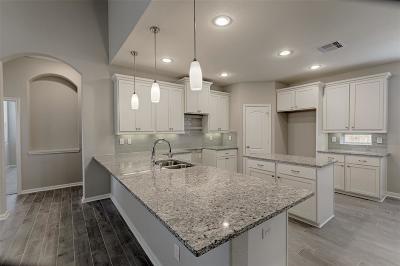 Montgomery Single Family Home For Sale: 238 Capriccio Lane