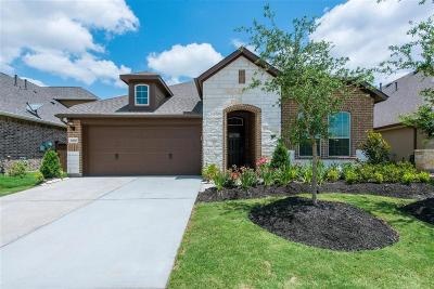 Katy Single Family Home For Sale: 6510 Tiger Trail