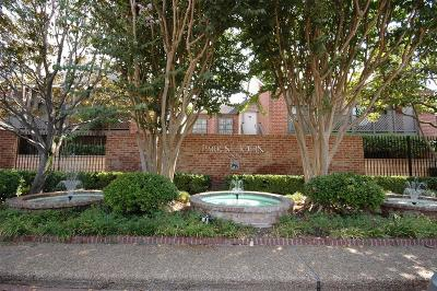 Houston Condo/Townhouse For Sale: 2829 Timmons Lane #218
