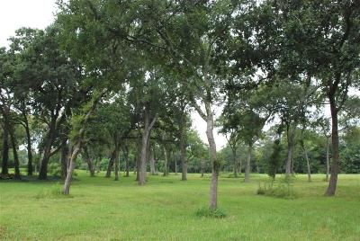 Friendswood Residential Lots & Land For Sale: 910 Falling Leaf