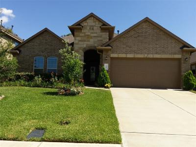 Conroe Single Family Home For Sale: 111 Pheasant Run Drive