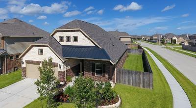 League City Single Family Home For Sale: 729 Mercer Falls Lane