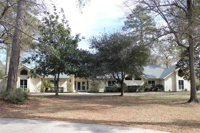 Tomball Single Family Home For Sale: 30826 William Juergens Drive