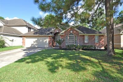 Single Family Home For Sale: 8211 Silver Lure Drive