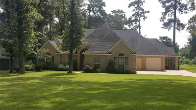 Tomball Single Family Home For Sale: 23116 Kobs Road #A