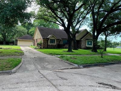 Houston Single Family Home For Sale: 9207 Landsdowne Drive