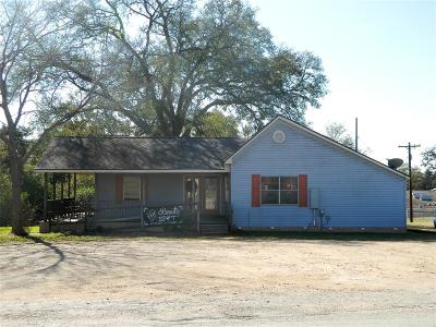 Austin County Single Family Home For Sale: 707 E Austin Street E