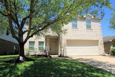Houston Single Family Home For Sale: 9823 Lynette Falls Drive