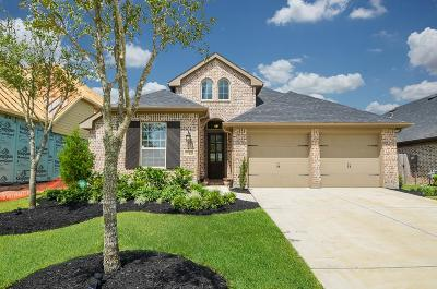 Katy Single Family Home For Sale: 29310 Kindle Way