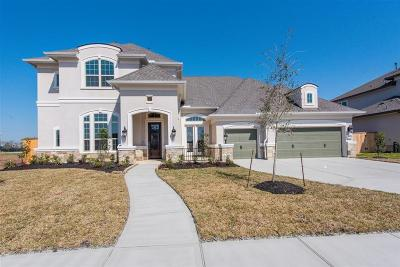 Friendswood Single Family Home For Sale: 1705 Avery Lane