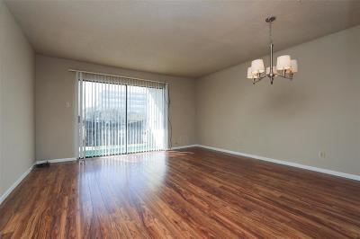 Houston TX Condo/Townhouse For Sale: $49,990