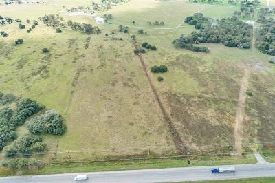 Lee County Country Home/Acreage For Sale: Tract 2 Hwy 290 E