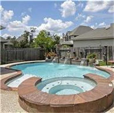 Spring Single Family Home For Sale: 28414 Lauren Cove Lane