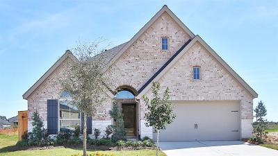 Fulshear Single Family Home For Sale: 29123 Brooks Valley Drive
