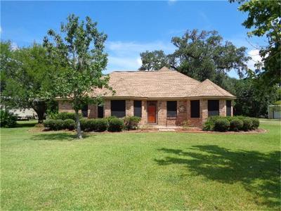 Brazoria Single Family Home For Sale: 205 County Road 461b