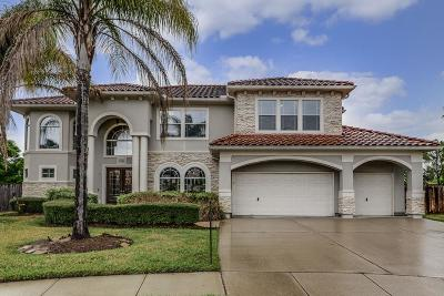 Pearland Single Family Home For Sale: 11501 Ivory Creek Drive