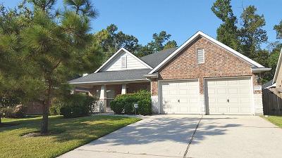 Houston Single Family Home For Sale: 14115 Albany Springs Lane