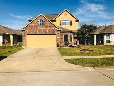 Tomball Single Family Home For Sale: 19230 Carriage Vale Lane