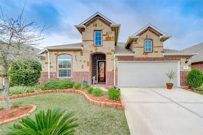 Tomball Single Family Home For Sale: 13006 Thorn Valley Court