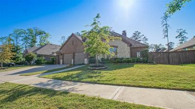 Humble Single Family Home For Sale: 17407 Sequoia Kings Drive