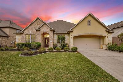 Missouri City Single Family Home For Sale: 3307 Dancing Creek Lane