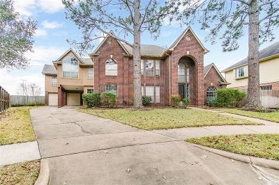 Sugar Land Single Family Home For Sale: 226 Shadow Wood Drive