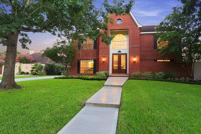 Houston Single Family Home For Sale: 13819 Trailville Drive