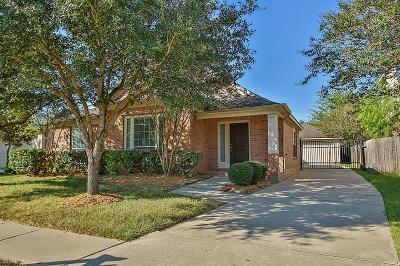 Houston Single Family Home For Sale: 17222 Valhallah Way