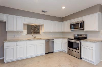 Fort Bend County Single Family Home For Sale: 3503 Palm Grove Drive