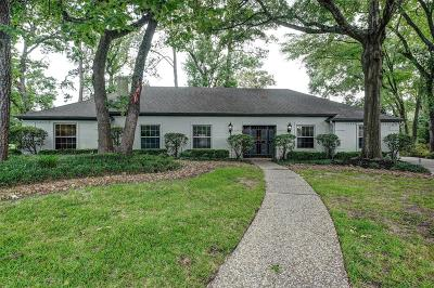 Houston Single Family Home For Sale: 13003 Mission Valley Drive