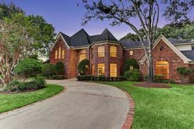 Katy Single Family Home For Sale: 20110 Rose Fair Court
