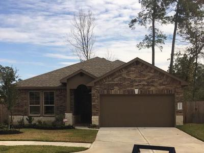 Conroe Single Family Home For Sale: 14031 S Wind Cave Court