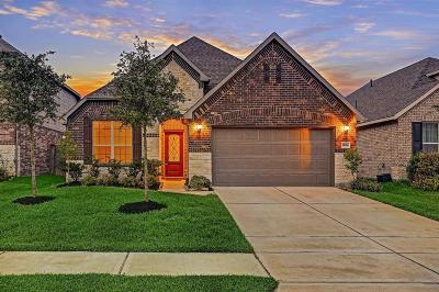 Katy TX Single Family Home For Sale: $253,575