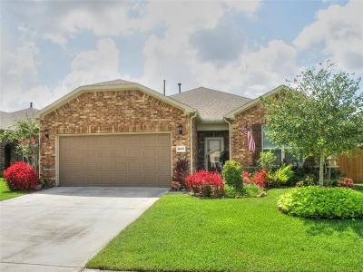 League City Single Family Home For Sale: 662 Tenuta Lane