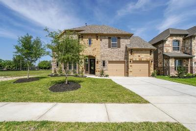 Manvel Single Family Home For Sale: 4205 Scarteen Court
