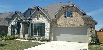 Lakes Of Savannah Single Family Home For Sale: 4610 Prairie Springs Lane