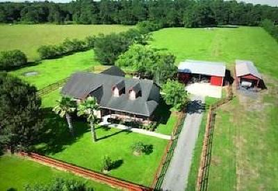 Alvin Single Family Home For Sale: 350 County Road 192