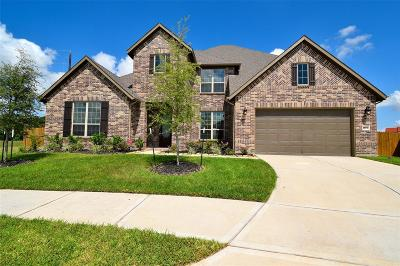 Katy Single Family Home For Sale: 28410 Middlewater View Lane