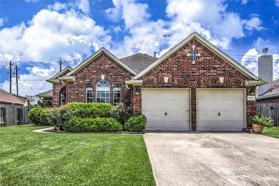 Houston Single Family Home For Sale: 8514 Kirkville Drive