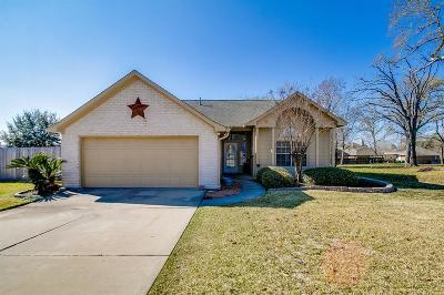 Willis Single Family Home For Sale: 6946 Gentle Breeze Drive