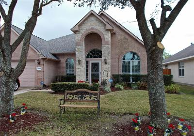 Pearland Single Family Home For Sale: 11318 Windy Dawn Drive