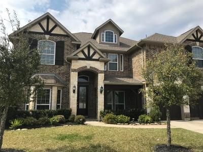 Spring Single Family Home For Sale: 6002 Brookway Willow Drive