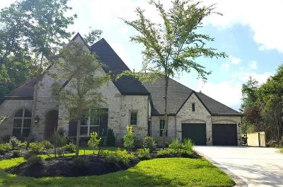 Montgomery Single Family Home For Sale: 122 Caledonia Circle