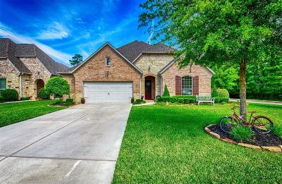 Montgomery Single Family Home For Sale: 161 Riverbend Way