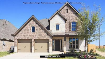 Pearland Single Family Home For Sale: 13605 Canyon Ranch Drive