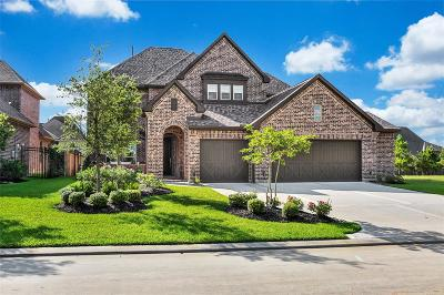 Tomball Single Family Home For Sale: 18 Canopy Green Drive