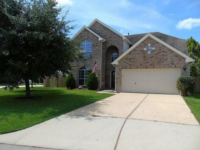 Conroe Single Family Home For Sale: 5 Lulach Circle