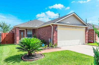 Katy Single Family Home For Sale: 18910 Dennington Drive
